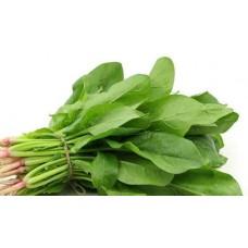 Palak leaf